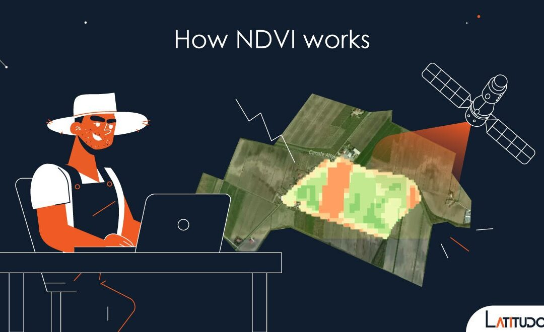 How NDVI index works and why it's useful for farmers
