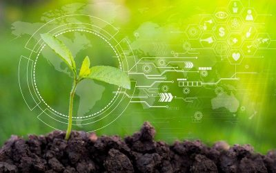 Agritech and precision farming for the development of the sector