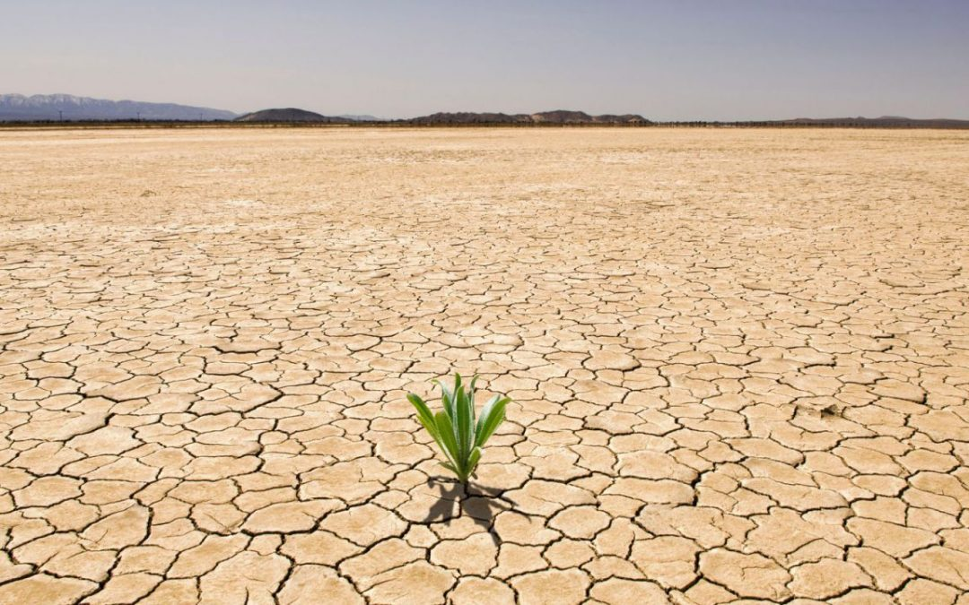 Geospatial methods to fight against drought